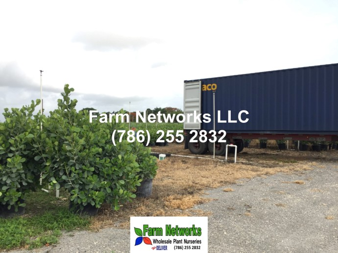 Farm-Networks-Homestead