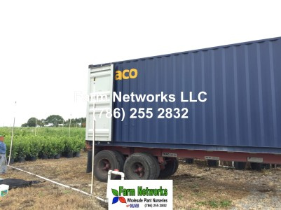 Florida plant exporters